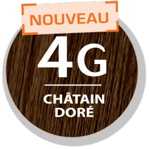 COLOR & SOIN COLORATION PERMANENTE CHÂTAIN DORÉ 4G