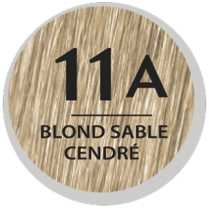 COLOR & SOIN COLORATION PERMANENTE BLOND SABLE CENDRE 11A